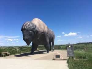 Jamestown's Giant Buffalo