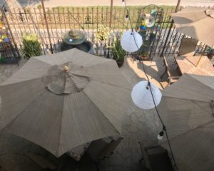 Palm Garden Cafe patio from above